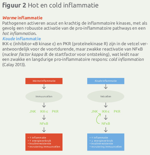 Hot en cold inflammation